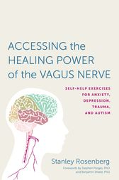Accessing the Healing Power of the Vagus Nerve by Stanley Rosenbery