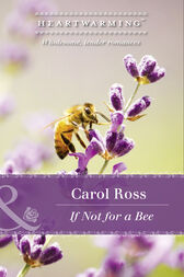 If Not For A Bee (Mills & Boon Heartwarming) (Seasons of Alaska, Book 3) by Carol Ross