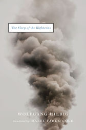 The Sleep of the Righteous by Wolfgang Hilbig
