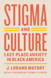 Stigma and Culture by J. Lorand Matory