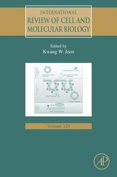International Review of Cell and Molecular Biology by Kwang W. Jeon