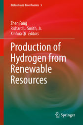 Production of Hydrogen from Renewable Resources by Zhen Fang