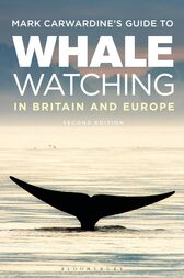 Mark Carwardine's Guide To Whale Watching In Britain And Europe by Mark Carwardine
