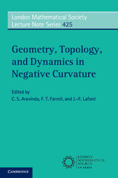 Geometry, Topology, and Dynamics in Negative Curvature by C. S. Aravinda