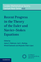 Recent Progress in the Theory of the Euler and Navier–Stokes Equations by James C. Robinson