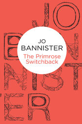 The Primrose Switchback: A Rosie Holland Novel 2 by Jo Bannister