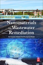 Nanomaterials for Wastewater Remediation by Ravi Kumar Gautam