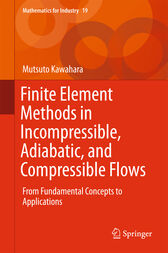 Finite Element Methods in Incompressible, Adiabatic, and Compressible Flows by Mutsuto Kawahara