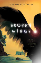 Broken Wings by Shannon Dittemore