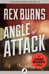 Angle of Attack by Rex Burns