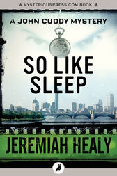 So Like Sleep by Jeremiah Healy