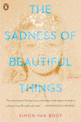The Sadness of Beautiful Things by Simon Van Booy